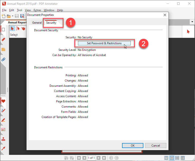 how to enter password in pdf secure