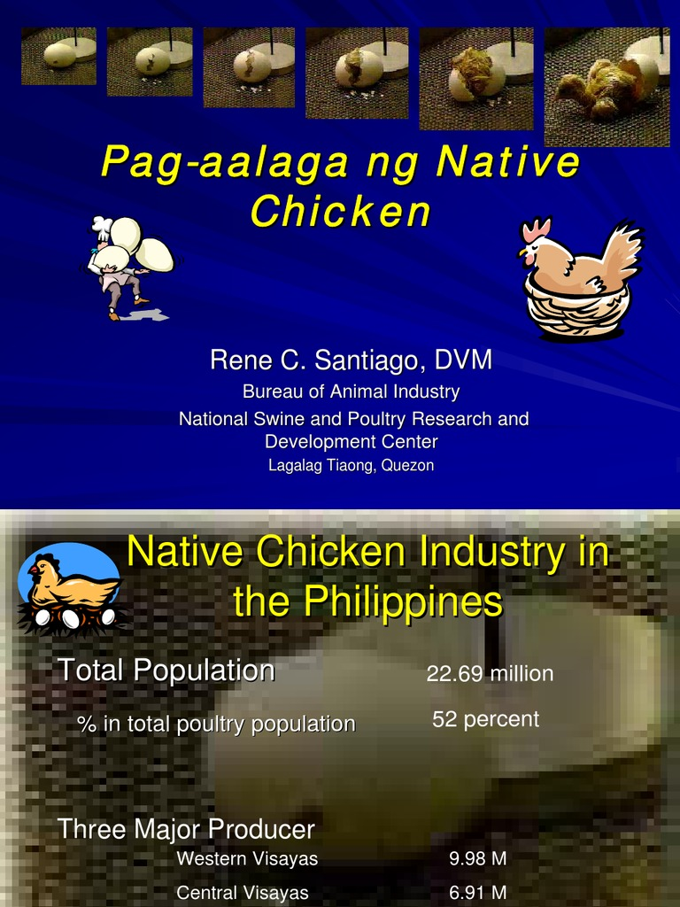 native pig production guide philippines pdf